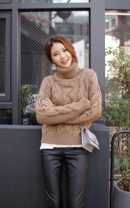 dahong_D665311_x1